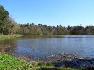 The Emperor Lake, an idyllic picnic spot, high above Chatsworth House