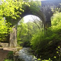 Below the Monsal Trail
