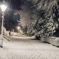buxton-christmas-scene-3