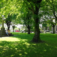 Litton Village Green