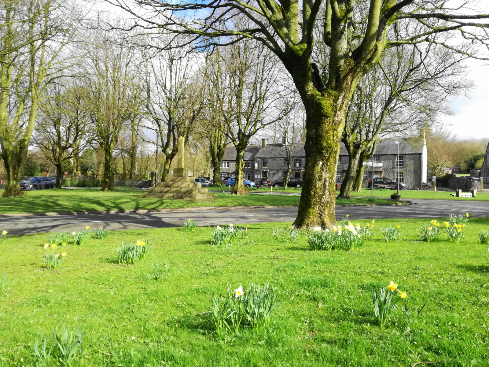 Pic Litton village green